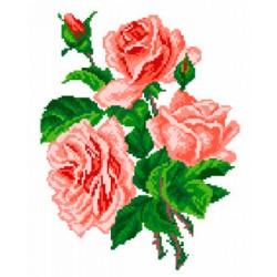 Kolme ruusua