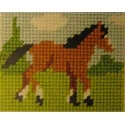 Hevonen niityllä